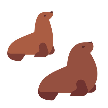 Male and female Southern sea lions, flat cartoon vector style illustration. Simple stylized isolated clip art drawing. Ilustração