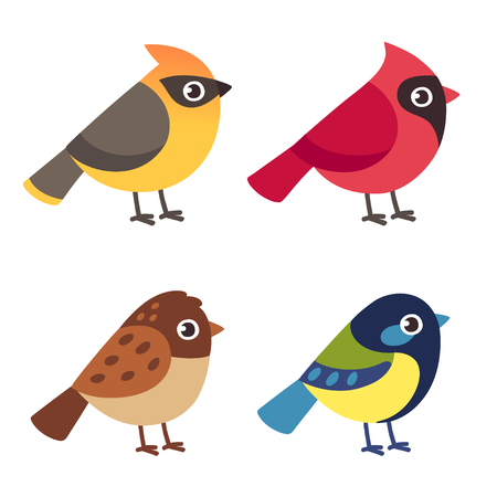 Set of cute cartoon small birds: Cedar Waxwing, Northern Cardinal, common Sparrow ant Blue Tit. Simple drawing, vector illustration set.