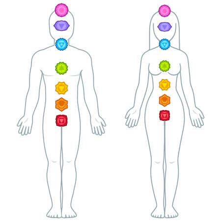 Silueta de figura masculina y femenina con símbolos de chakras, ubicación de chakras infografía de Ayurveda ilustración vectorial Ilustración de vector