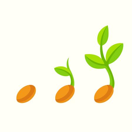 Illustrazione del fumetto del seme di germinazione. Piantina di piante in fasi diverse, ClipArt vettoriali isolati. Vettoriali