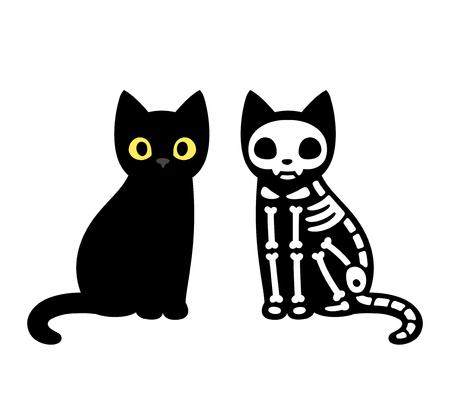 Cartoon black cat drawing with skeleton, cute Schrodinger's cat illustration. Funny Halloween clip art design. Illustration