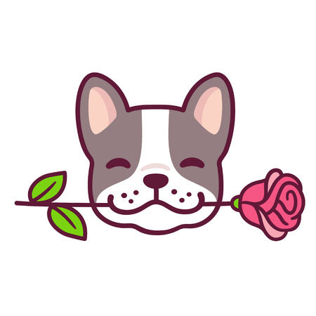 Funny cartoon French Bulldog puppy holding rose in mouth. Cute Valentines day dog greeting card vector illustration. Illustration