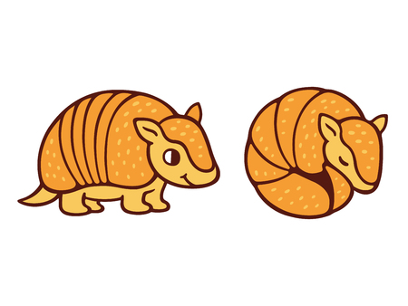 Cute cartoon armadillo drawing, standing and roll up in a ball. Isolated vector illustration. Ilustração
