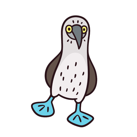 Blue-footed booby, funny cartoon bird drawing. Isolated vector illustration.