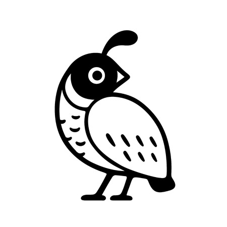 California quail drawing. Simple black and white logo design. Isolated vector bird illustration. Ilustração