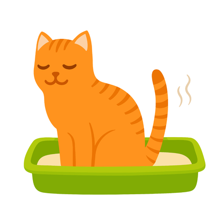 Cartoon cat pooping in litter box. Cute and funny kitty drawing. Pet life vector illustration. Ilustracja