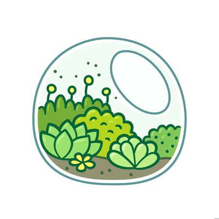 Cute terrarium with plants. Moss, succulents and flowers in glass jar. Hand drawn doodle style vector illustration.