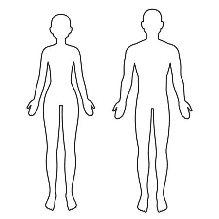 Contorno de silueta de cuerpo masculino y femenino. Plantilla de anatomía en blanco para infografías médicas. Ilustración de arte de clip de vector aislado. Ilustración de vector