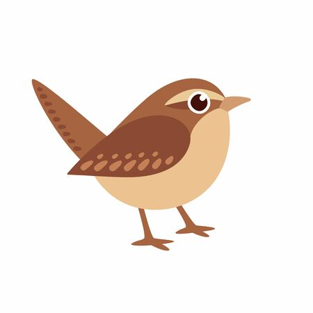 Carolina Wren, small Northern American bird and state bird of South Carolina, in cute cartoon style. Simple drawing, isolated vector illustration. Фото со стока - 128176270