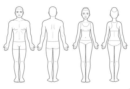 男性と女性のボディチャート、フロントとバックビュー。医療インフォグラフィックのための空白の人体テンプレート。分離されたベクター クリップ アートのイラストレーション。