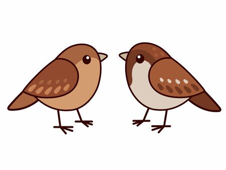 Male and female house sparrows. Cute cartoon bird couple, isolated vector clip art illustration.