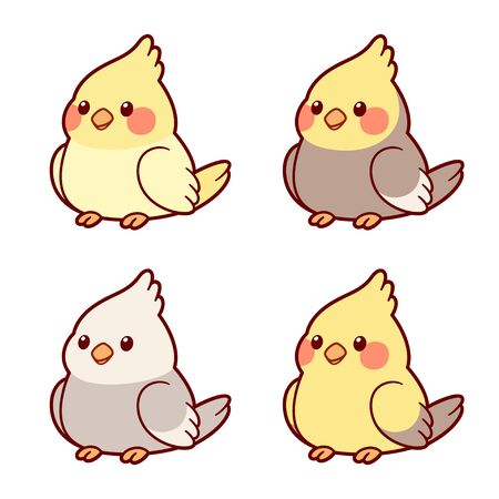 Insieme sveglio dell'illustrazione dei pappagalli del cockatiel del fumetto. Diverse mutazioni di colore, combinazioni di giallo e grigio. ClipArt vettoriali isolati, stile di disegno adorabile. Vettoriali