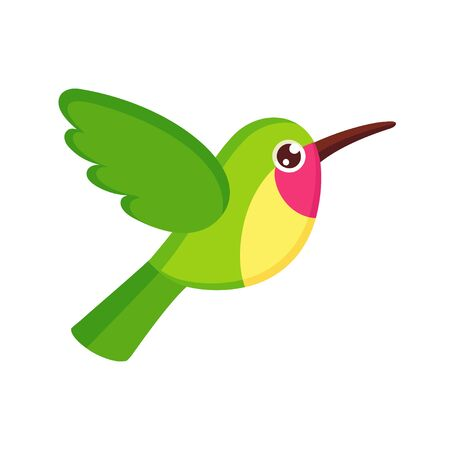 Cute cartoon hummingbird drawing. Little green colibri, isolated vector clip art illustration.