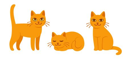Cute cat drawing set in different poses. Sitting, standing and sleeping. Ginger kitty in simple cartoon style, isolated vector illustration.