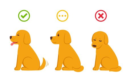 Cartoon dog with yes, now and maybe symbols, wrong and right. Dog in different states: excited, neutral and sad, with good (green checkmark) and bad (red cross) icons. Isolated vector illustration.
