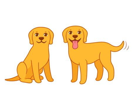 Yellow labrador retriever dog set, sitting and standing. Golden lab in cute cartoon style, isolated vector illustration.