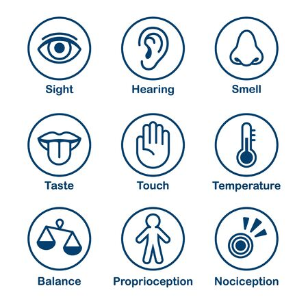 Icon set of human senses of perception. Sight, smell, hearing, touch, taste and sense of balance, temperature, body and pain. Simple, minimal line icons vector illustration. Vector Illustration