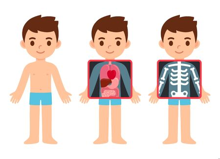 Cute cartoon boy with x-ray screen showing internal organs and skeleton. Element of educational infographics for kids. Isolated vector clip art illustration.