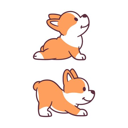 Cute cartoon dog doing yoga. Adorable little corgi puppy in Upward Facing Dog and Downward Facing Dog posture. Funny vector clip art illustration.