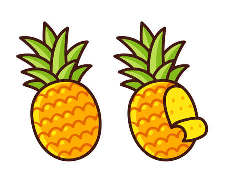 Cartoon pineapple drawing, whole and peeling. Hand drawn icon, vector clip art illustration. Illustration