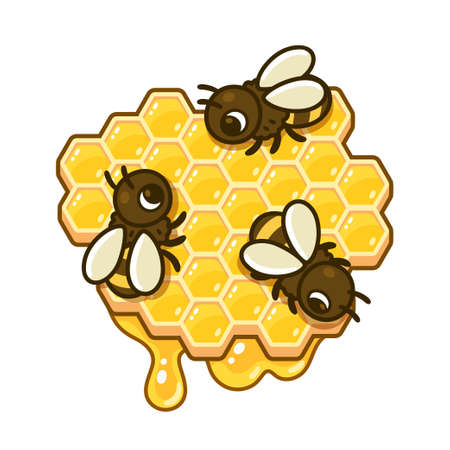 Cute cartoon bees on honeycomb piece with dripping honey. Beekeeping vector clip art illustration. Illustration