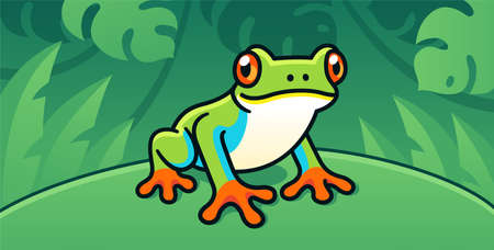 Red-Eyed Tree Frog, cute cartoon illustration of Central American rainforest frog in the wild. Illustration