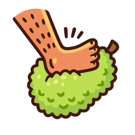Cartoon foot stepping on jackfruit. Enfiar o pé na jaca (Put one's foot in a jackfruit in Portuguese) Brazilian expression for Get drunk. Vector clip art illustration.