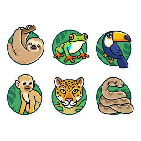 Cute cartoon rainforest animals set. Sloth, tree frog, toco toucan, spider monkey, jaguar and boa constrictor. Jungle wildlife vector illustrations. 矢量图像