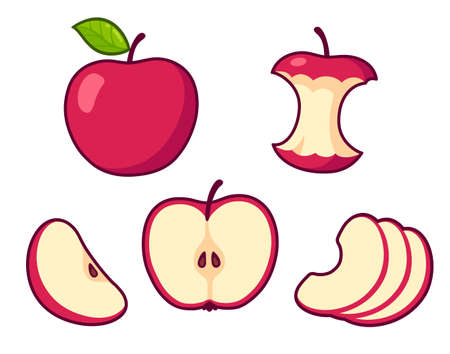 Red apple cartoon set. Whole fruit and core, cross section of cut apple, slices. Isolated vector clip art illustration.