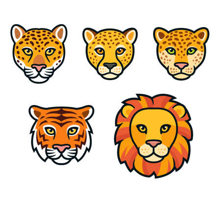 Big wild cats face set. Lion, tiger, leopard, jaguar, cheetah heads. Cartoon vector drawing, isolated vector clip art illustration. Vectores