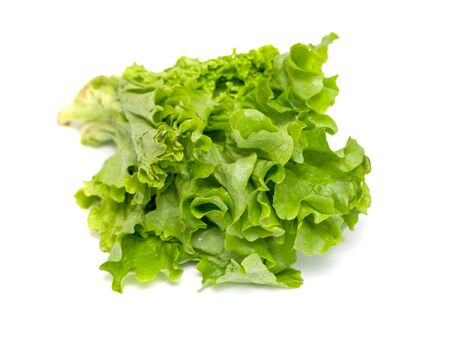 green background: Green salad on white background