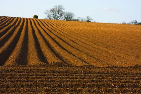 furrows: Rural landscape depicting the wonderful vanishing point patterns of a ploughed field Stock Photo