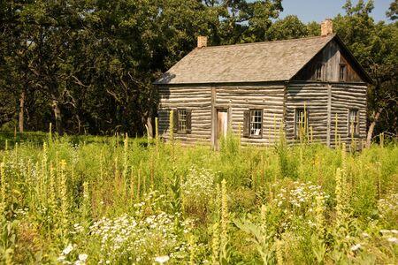 log in: Traditional Log Cabin set in flower meadow