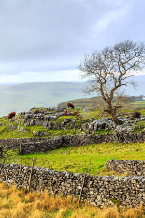 dales: Yorkshire Dales after a heavy hail storm