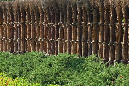 japones bambu: valla de bamb� japon�s