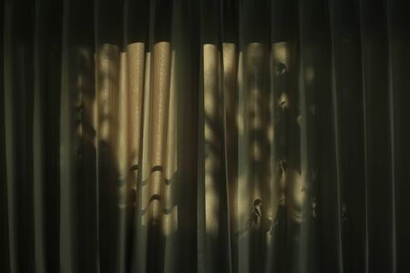 tree leaves shade cast light and shadow on brown curtain. afternoon in the house. sleepy atmosphere at home. sad depressed caged psychology and down concepts