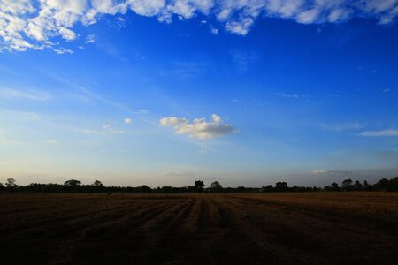 a single cloud in a clear sky scene surrounded by glove of clouds. low hanging cloud over a harvested rice field.