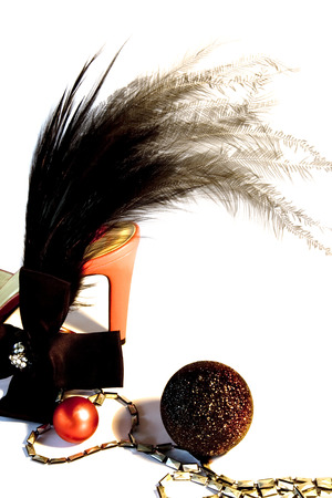 Feathers, Diamante and Red High Heels it is Time to Party