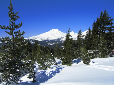Snow-covered mountain with pine trees on a sunny day Stock Photo