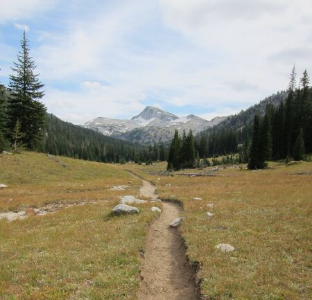 A path leads through the meadow to a snow-capped peak