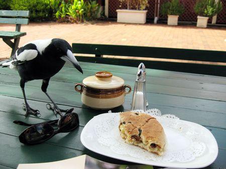 urraca: Tras el desayuno con Magpie