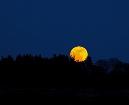Super Moonrise photo