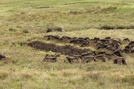 turba: Turba �rea de corte, mostrando turbas corte secado en p�ramos