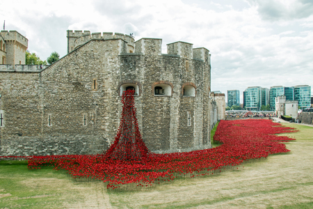 cummins: Display of ceramic poppies commemorating the centenary of the start of the First World War, with the poppies representing military personnel killed during the War. Editorial