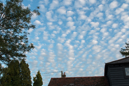 altocumulus: Altocumulus clouds early evening in August, England.