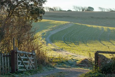 Winter scene of a gateway and track leading into a field on the South Downs in Sussex. Stock Photo