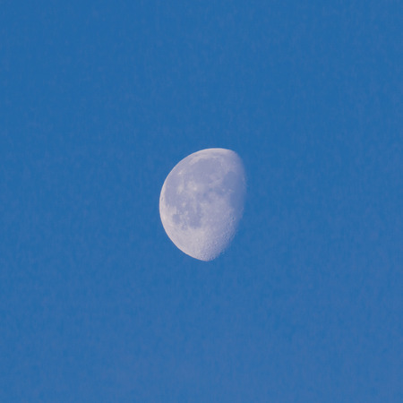 waxing gibbous: Waxing Gibbous Moon in blue sky showing craters