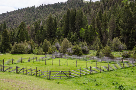 split rail: Livestock holding pen on a Montana ranch in late spring Stock Photo