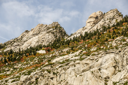 wasatch: Autumn colors along a slope in the Wasatch Mountains in Utah Stock Photo