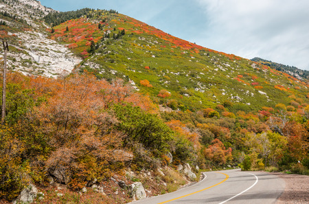 wasatch: Winding road in the Wasatch Mountains in Utah with fall colors on a beautiful day